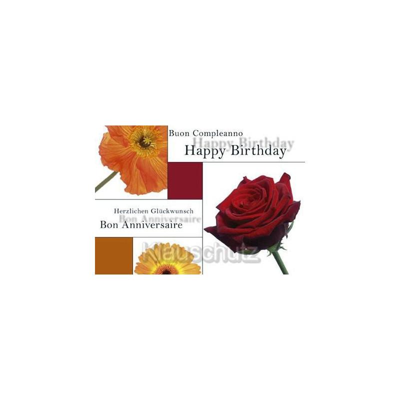 Buon Compleanno Happy Birthday Herzlichen Glückwunsch Bon Anniversaire | Geburtstagskarte Postkarte Geburtstag