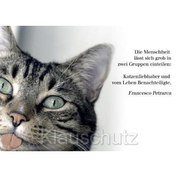 Die Menschheit lässt sich grob in zwei Gruppen einteilen:  Katzenliebhaber und vom Leben Benachteiligte.