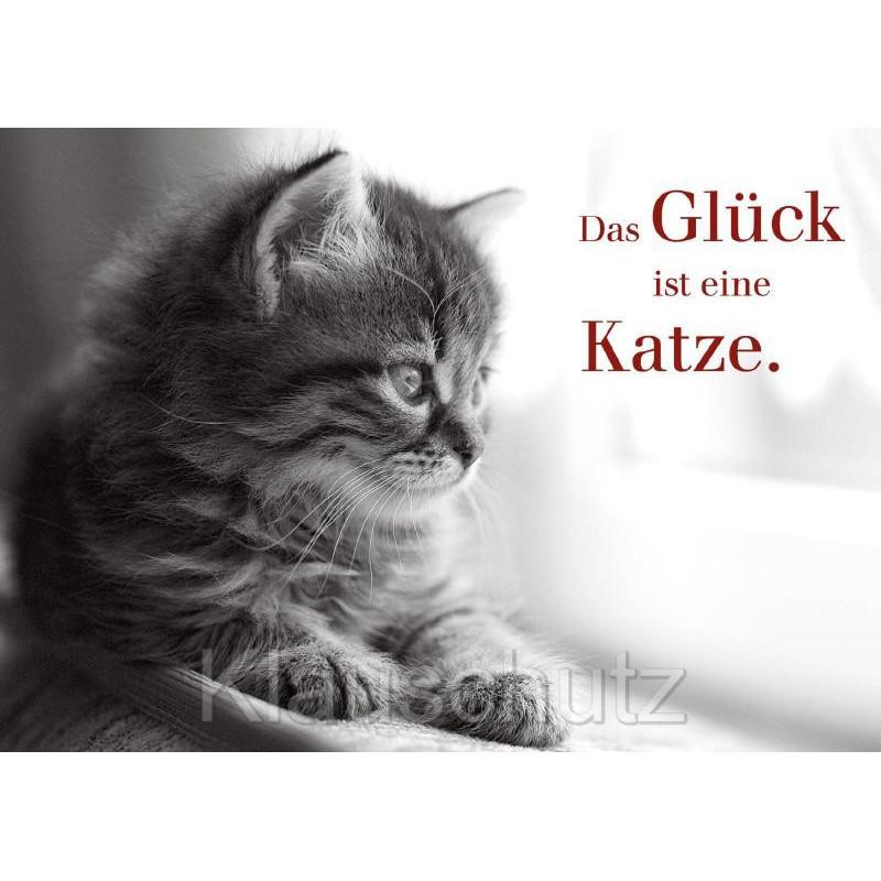 Postkarte: Das Glück ist eine Katze.