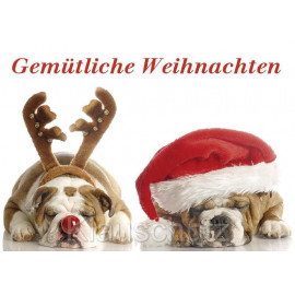 Gemütliche Weihnachten - schlafende Hunde - Postkarte Weihnachtskarte