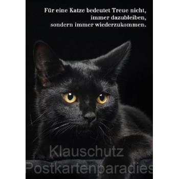 Für eine Katze bedeutet Treue nicht, immer dazubleiben, sondern immer wiederzukommen. Postkarte vom Postkartenparadies