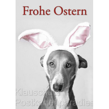 Frohe Ostern Hund mit Hasenohren - Postkarte Osterkarte vom Postkartenparadies