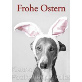 Frohe Ostern Hund mit Hasenohren - Postkarte Osterkarte