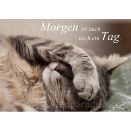 Katzen Postkarte vom Postkartenparadies - Morgen ist auch noch ein Tag.