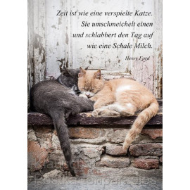 Postkarte: Zeit ist wie eine verspielte Katze.