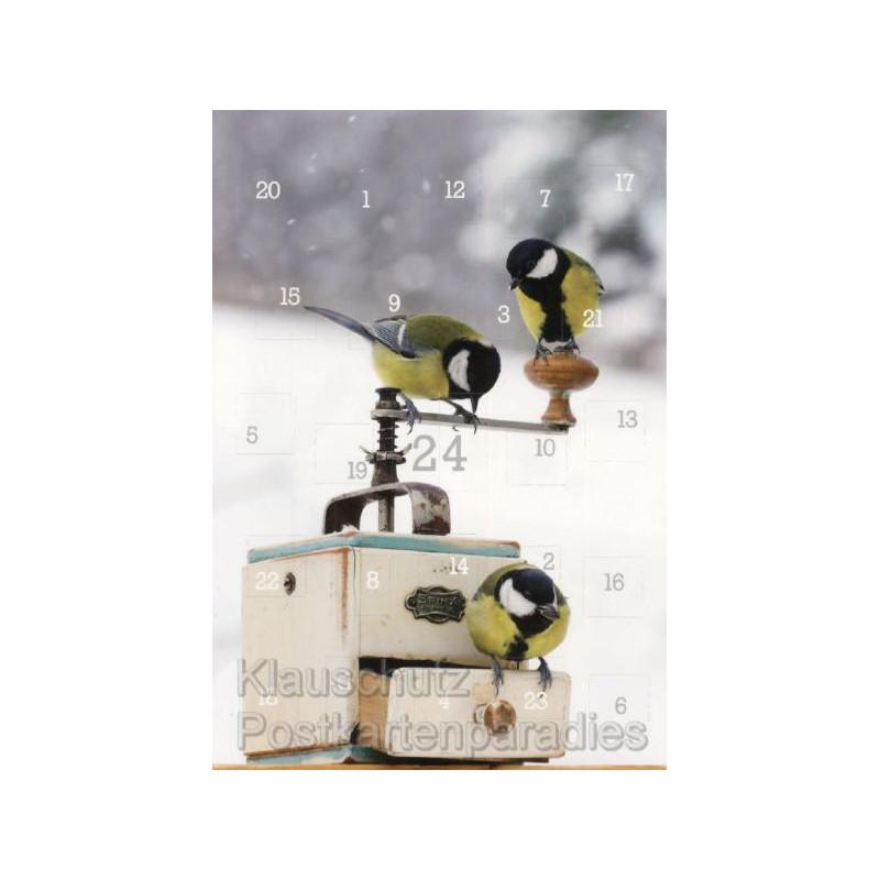 Vögel im Winter Kalender Adventskalender Doppelkarte