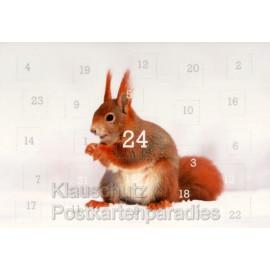 Heimische Tiere im Winter Adventskalender Doppelkarte