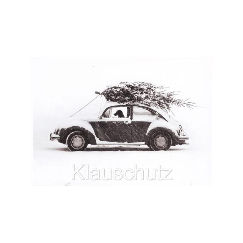 Hund - Autofahrt mit Weihnachtsbaum - Postkarte Weihnachtskarte