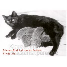 Postkarte Katzen Sprüche - Dieses Bild hat sechs Fehler. Finde sie.