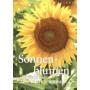 Postkartenbuch mit 15 Sonnenblumen Motiven mit interessanten Infos über die Sonnenblume auf der Rückseite.