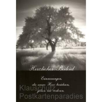 Doppelkarten Postkarten Trauer - Herzliches Beileid - Erinnerungen, die unser Herz berühren, gehen nie verloren.