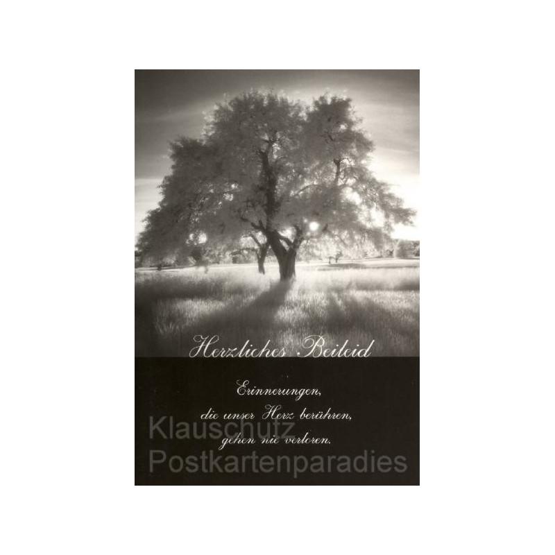 Gemeinsame Trauerdoppelkarten | Herzliches Beileid &QR_58