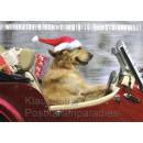 Lustige SkoKo Postkarte: Weihnachten kommt immer so tierisch schnell.
