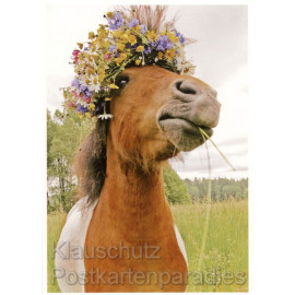 Tier Postkarte von Rannenberg - Pferd mit Blütenkranz