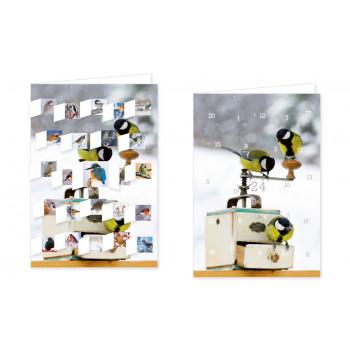 Vögel im Winter Kalender Adventskalender Doppelkarte - mit aufgeklappten Türchen.