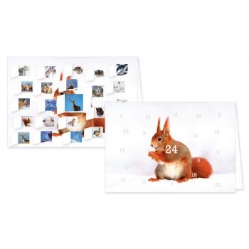 Heimische Tiere im Winter Adventskalender Doppelkarte - mit aufgeklappten Türchen.