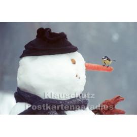Schneemann mit Meise | Winter Weihnachtskarte