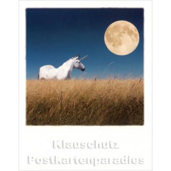 Polacard von Taurus - Einhorn vor Vollmond
