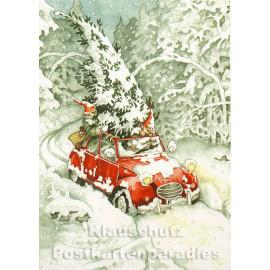 Weihnachtsbaum Kauf im roten Auto | Inge Löök Weihnachtskarte