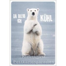 Eisbär Postkarte | Da bleib ich kühl