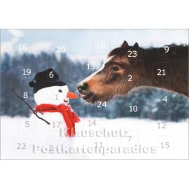 Pferde im Schnee - Adventskalender