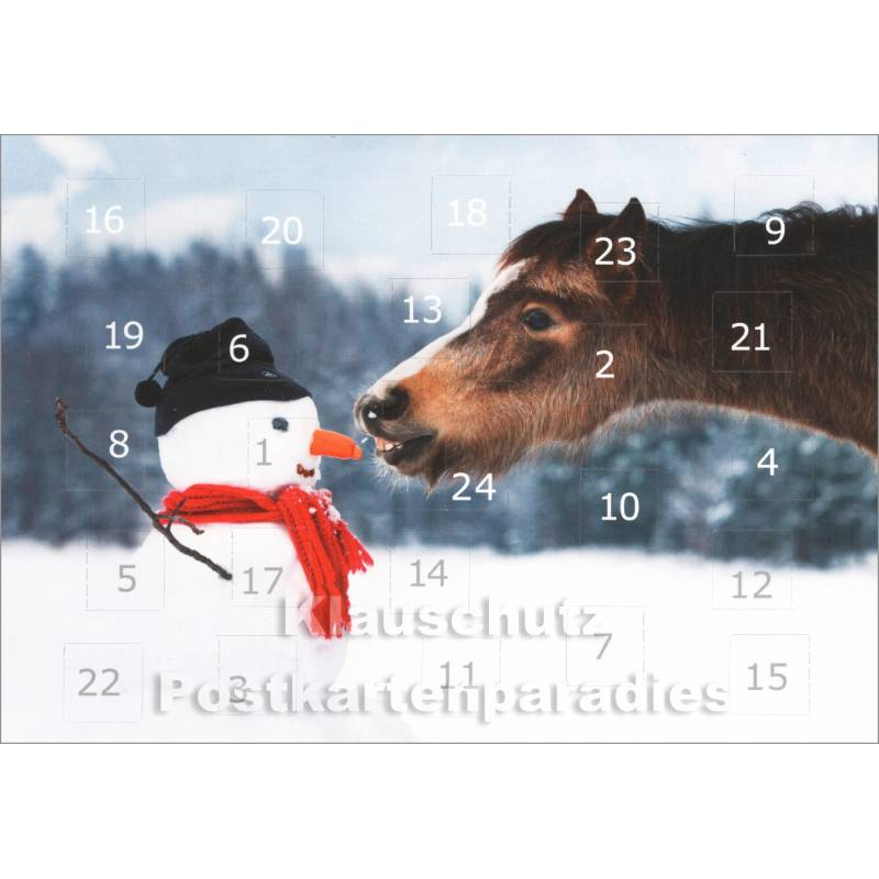 pferde im schnee adventskalender doppelkarte. Black Bedroom Furniture Sets. Home Design Ideas