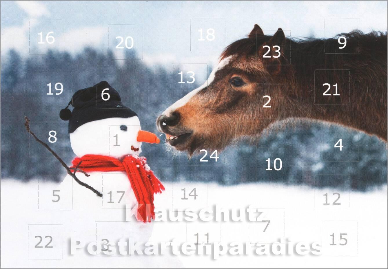 Pferde zitate choice image die besten zitate ideen for Schnee zitate
