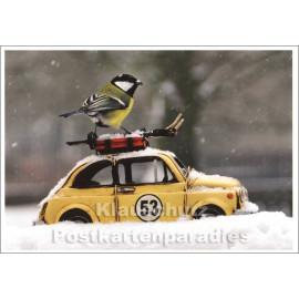 Weihnachtskarte Wintersport Meise