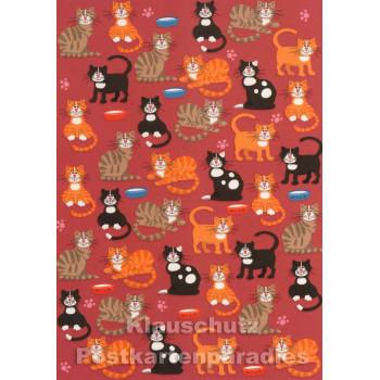 Schöne Grafik Katzen Postkarte