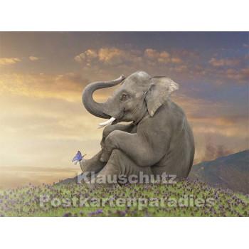 Postkartenbuch von Rannenberg | Zauberhafte Welten
