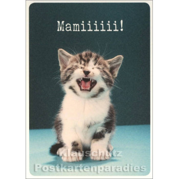 Katzen Postkarte mit süßem Katzenbaby
