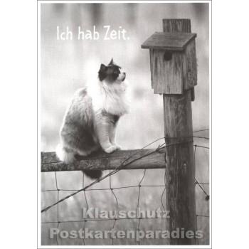 Fotokarte Katze - Ich hab Zeit