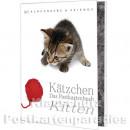 Postkartenbuch | Kätzchen