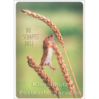 Du schaffst das - Tier Postkarte