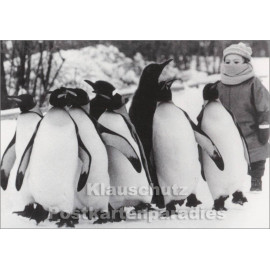 Kind mit Pinguinen | Fotokarte