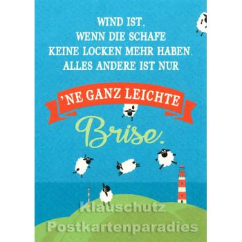 Leichte Brise - Küsten Postkarten