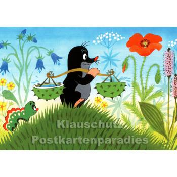 Postkarte | Der kleine Maulwurf holt Wasser