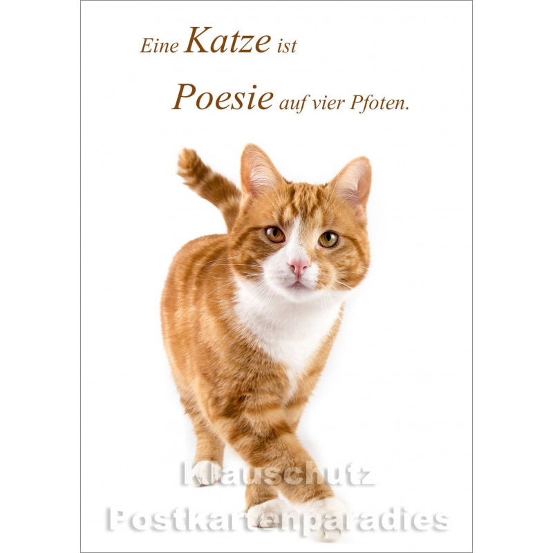 Eine Katze ist Poesie -  Katzen Postkarte vom Postkartenparadies