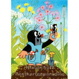 Postkarte | Der kleine Maulwurf mit Spiegel