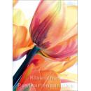 Blumen Postkarten Frühling Sparset - Motiv: Tulpen orange