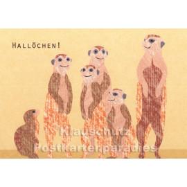 Holzschliffpappe Postkarten von Blankensteyn | Hallöchen! Erdmännchen