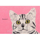 Holzschliffpappe Postkarten von Blankensteyn | Danke Katze
