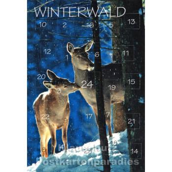 Adventskalender Doppelkarte - Winterwald