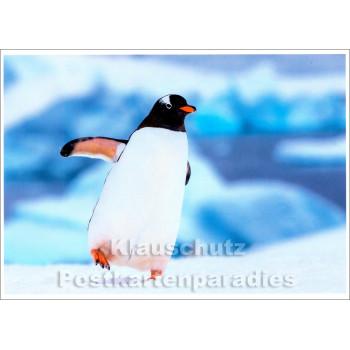 SKOKO Postkarte Winter - Pinguin im Schnee