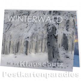 Postkartenbuch Winterwald von Rannenberg & Friends