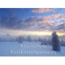 Postkartenbuch Winterwald von Rannenberg & Friends - Postkarte 06