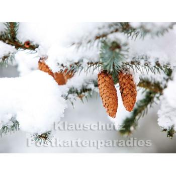 Postkartenbuch Winterwald von Rannenberg & Friends - Postkarte 11
