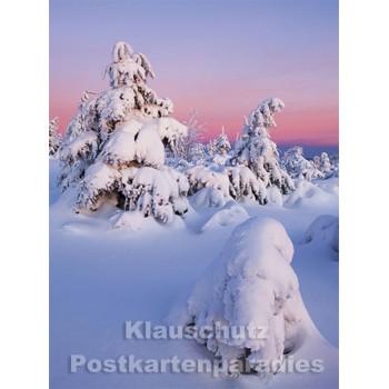 Postkartenbuch Winterwald von Rannenberg & Friends - Postkarte 14
