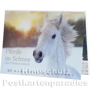 Pferde im Schnee - Postkartenbuch von Rannenberg & Friends