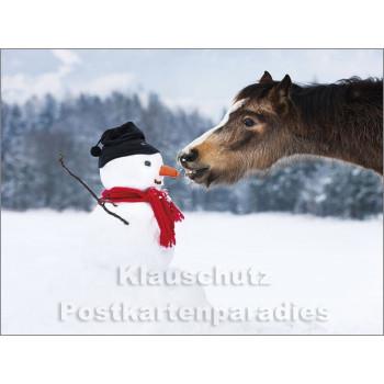 Pferde im Schnee - Postkartenbuch von Rannenberg & Friends - Postkarte 2